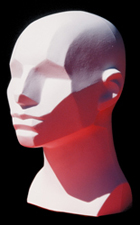 planar-mannequin-from-planesofthehead-com_